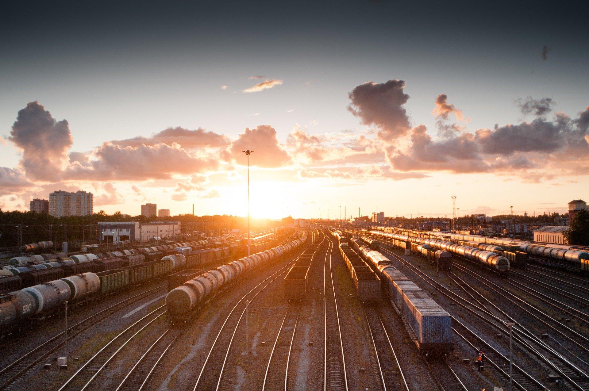 polarpanda_train